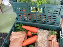 Harvest of Hope organic vegetable boxes ready for delivery.